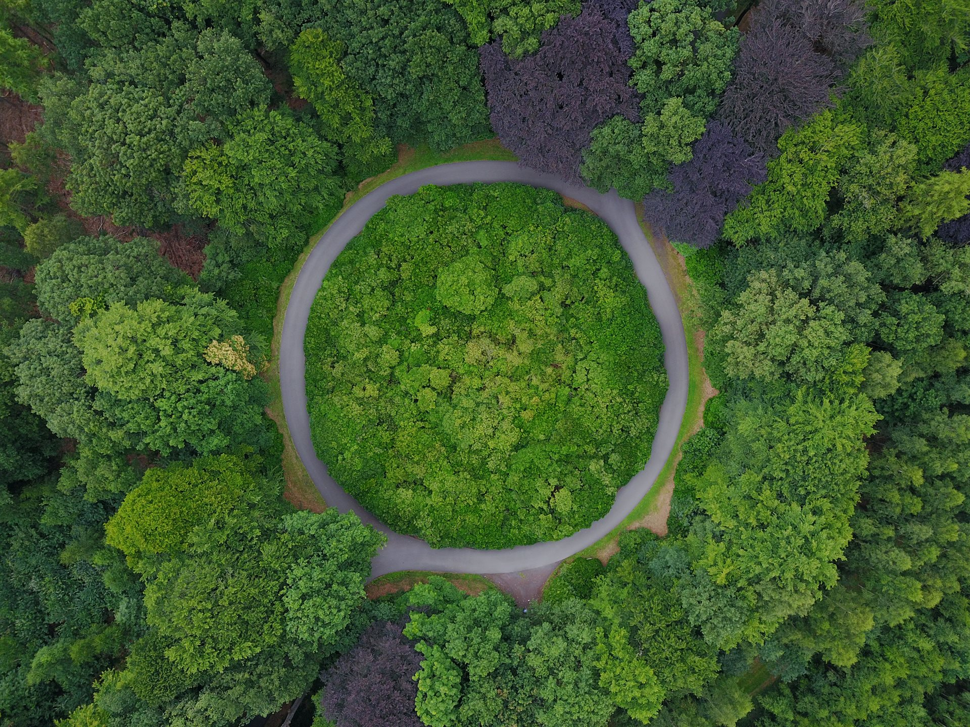 Five steps to drive the circular economy through your procurement process