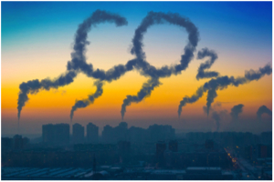 Blog: Whose carbon is it anyway?