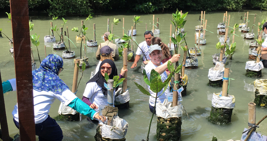 From the office to the mangrove swamp – measuring climate action in Asia