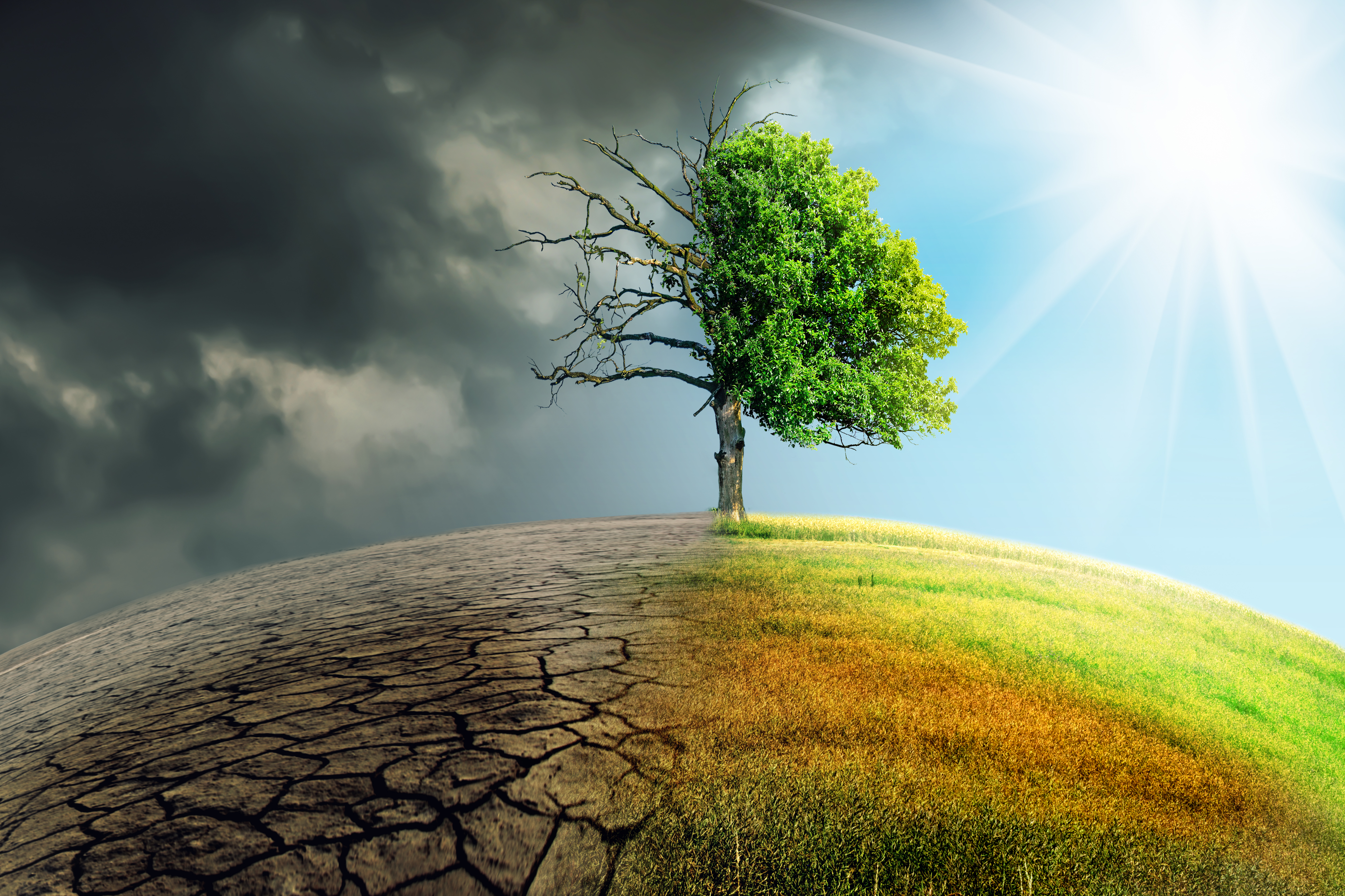 Powerful climate modelling provides a glimpse into a bleak future